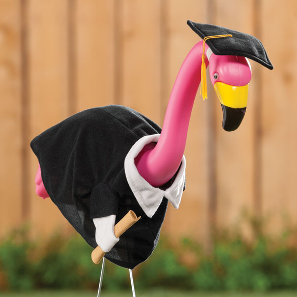 Graduation Junior Goose Flamingo Outfit - View 4