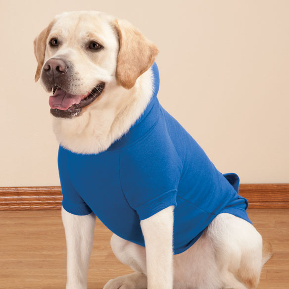 Personalized Blue Dog Sweatshirt - View 2