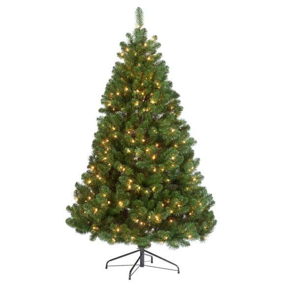 6.5' Pre-lighted Oregon Fir - View 2