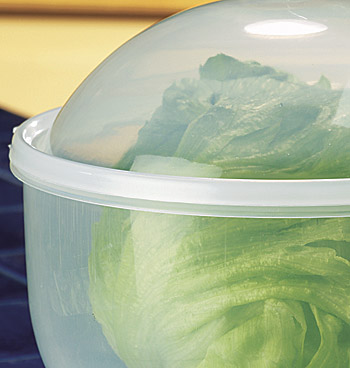 Lettuce Keeper™ - View 2