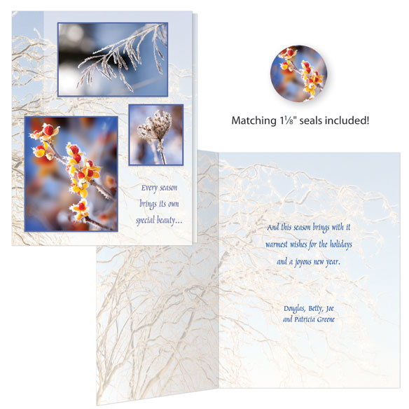 Season's Beauty Christmas Cards - Set Of 20