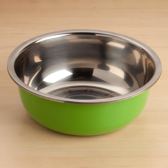 Large Stainless Steel Bowl - Green