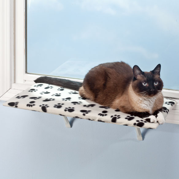 Paw Print Shelf with Warmer