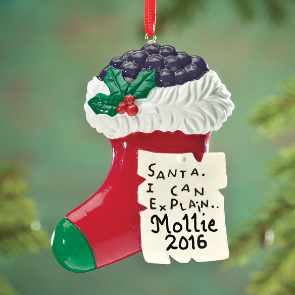 "Personalized ""Santa, I Can Explain"" Ornament"