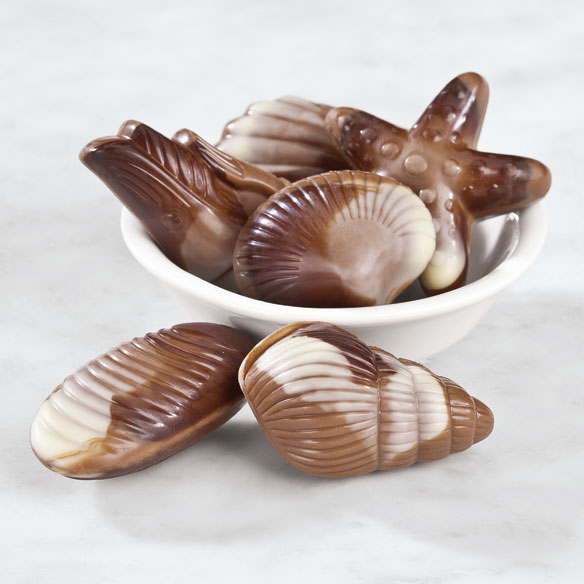 Belgian Chocolate Seashells, 2.3 oz.
