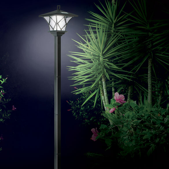 Solar LED Lamp Pole
