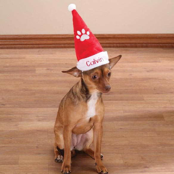 Personalized Santa Pet Hat - View 1