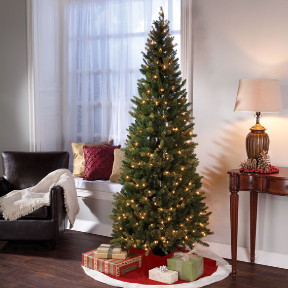 7-ft. Pre-Lit Noble Spruce with Clear Lights