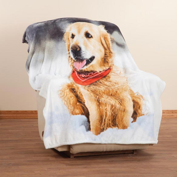 Retriever in the Snow Micro Mink Throw