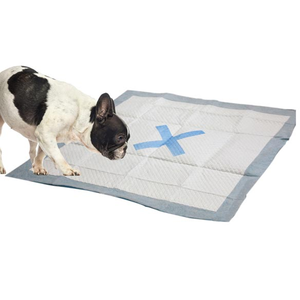 X Marks the Spot Puppy Pads, 100 count