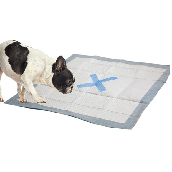 X Marks the Spot Puppy Pads - 30 count